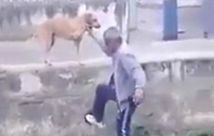 Borracho le pide ayuda a su perro para saltar una barda