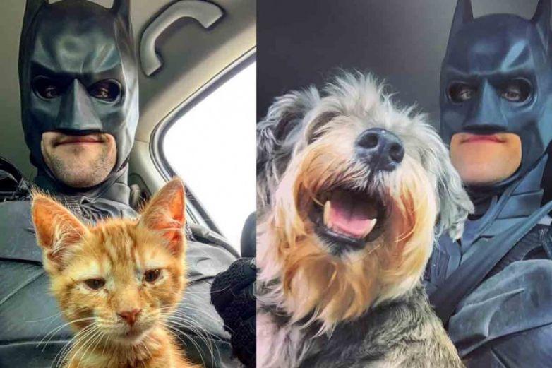 'Batman' rescata animales y les busca hogar
