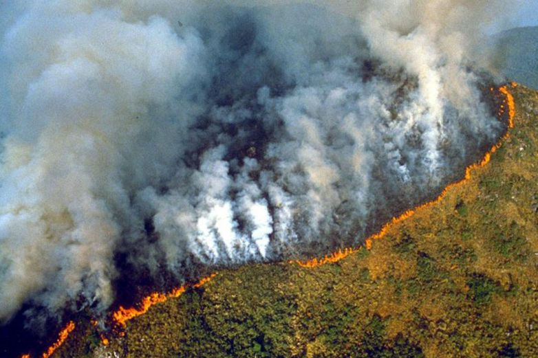 Amazonía en llamas, incendio en selva brasileña causa conmoción en redes