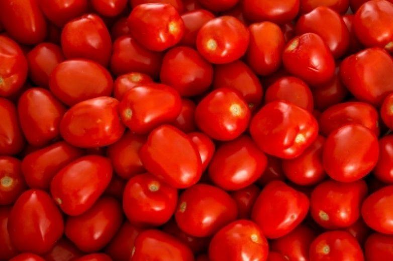 Refuerza EU inspección de tomates provenientes de México
