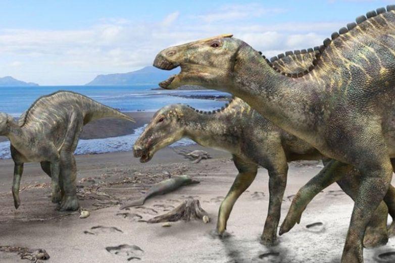 Descubren tumor de cáncer en dinosaurio de 77 millones de años