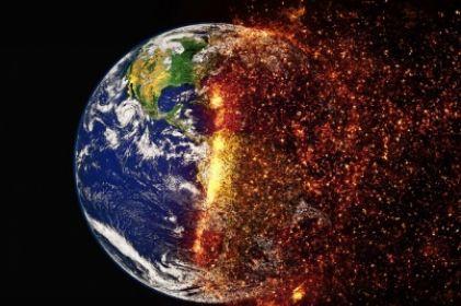 Cambio climático hace peligrar los medicamentos del futuro