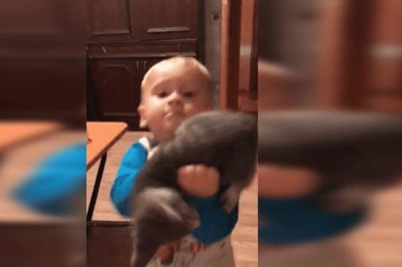 Épica pelea entre bebé y gatito hace reír a internautas