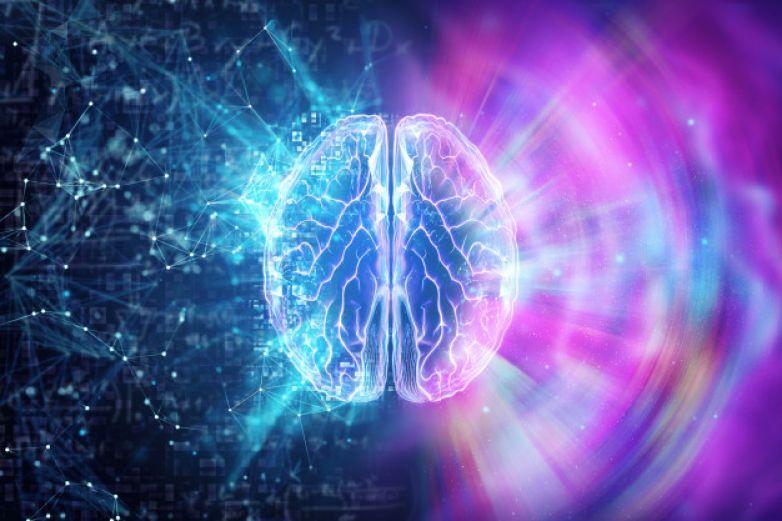 Cerebro está preparado para seguir ritmo de canciones