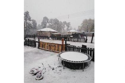 Cae nevada en El Largo Maderal