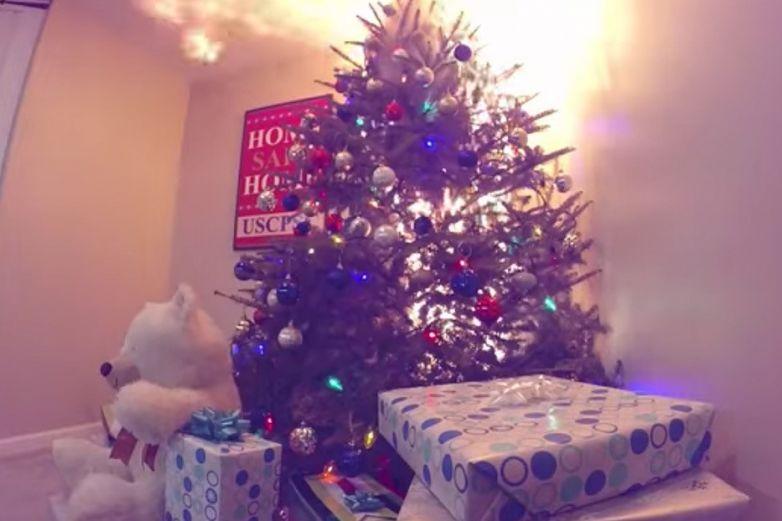 Así de rápido arde un árbol de Navidad natural