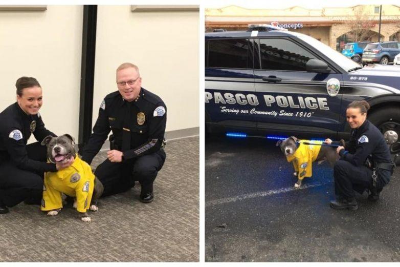 Perro con enfermedad terminal cumple su último deseo; ser policía por un día