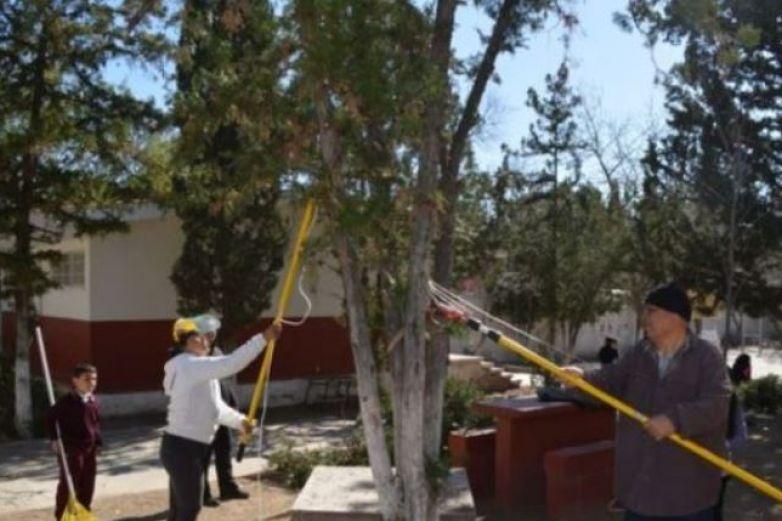 Podan árboles en escuelas de Chihuahua