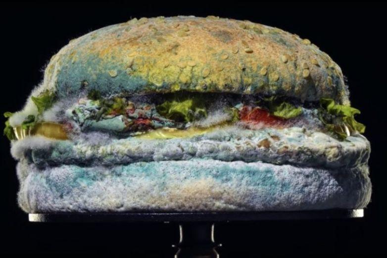 Whopper con moho: Burger King cambiará sus hamburguesas
