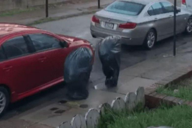 Hombres salen a la calle disfrazados de basura durante cuarentena
