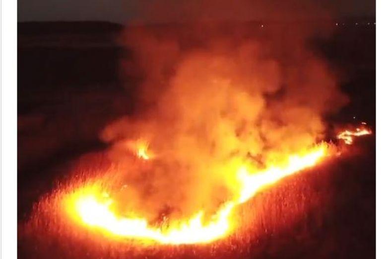 Arde Chernobyl: así se ven los incendios forestales en la zona ...
