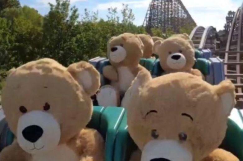 Prueban montaña rusa con osos de peluche ¡casi listos para abrir!