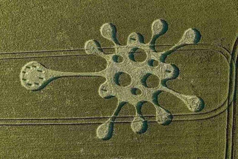 Aparece figura de Covid-19 en campo de cultivo en Inglaterra