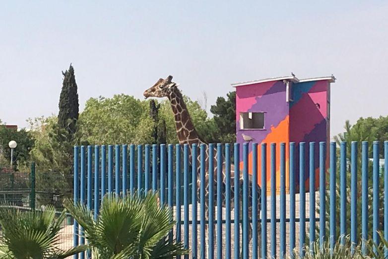 Rehabilitarán de manera integral el Parque Central de #CiudadJuárez