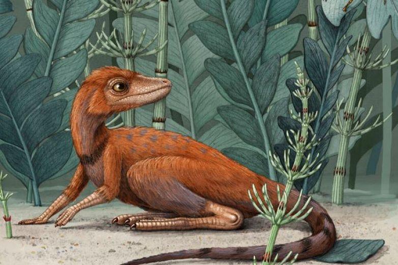 Fósiles revelan predecesor de dinosaurios de apenas 10 cm