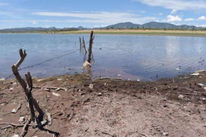 En sequía el 77% del territorio en el estado