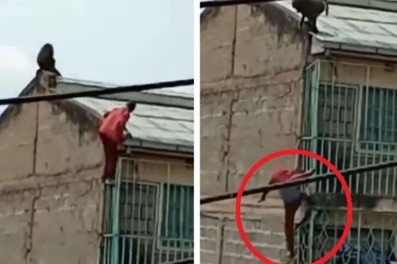 Hombre cae de un edificio al ser atacado por un mono salvaje
