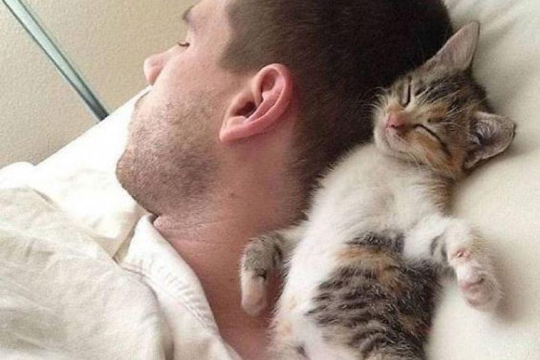 Hombres con gato en su foto de perfil serían ¡neuróticos!