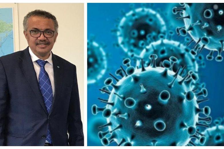 La OMS confirma el origen del coronavirus