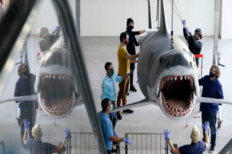 Bruce, el último 'Tiburón, llega al Museo de la Academia