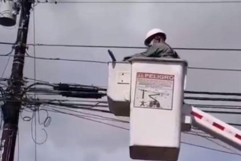 Bomberos rescatan a perezoso atrapado en poste
