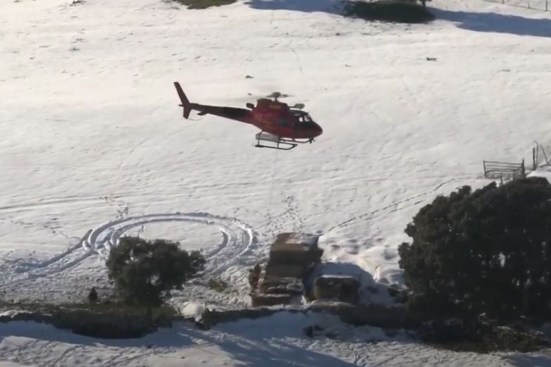 Alimentan desde helicóptero animales atrapados por nevada en Madrid