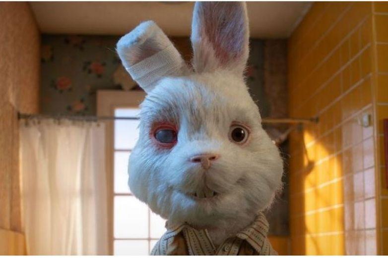 Video: 'Save Ralph', la triste campaña contra la experimentación en animales