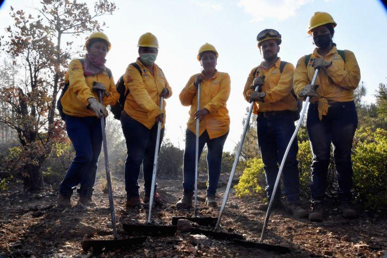 Heroínas salvan a los bosques del fuego