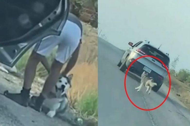 Video: Abandonan a perrito en carretera de EP y sigue el auto