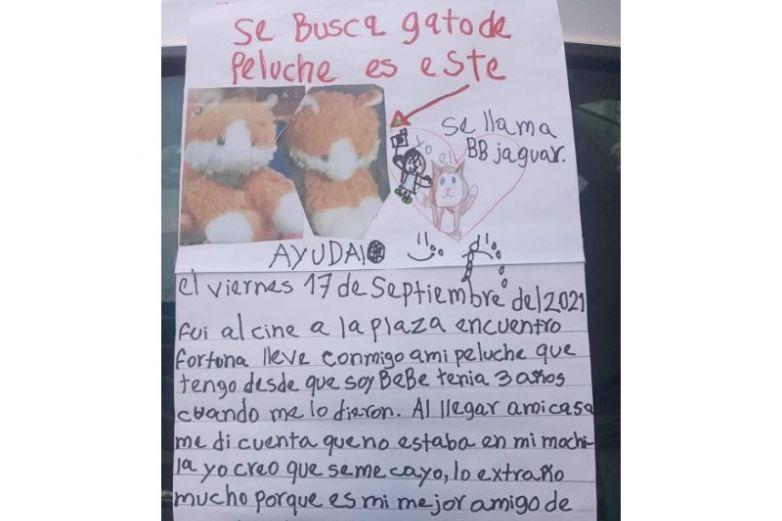 Perdió a su gatito de peluche; ofrece dulce y 20 pesos de recompensa